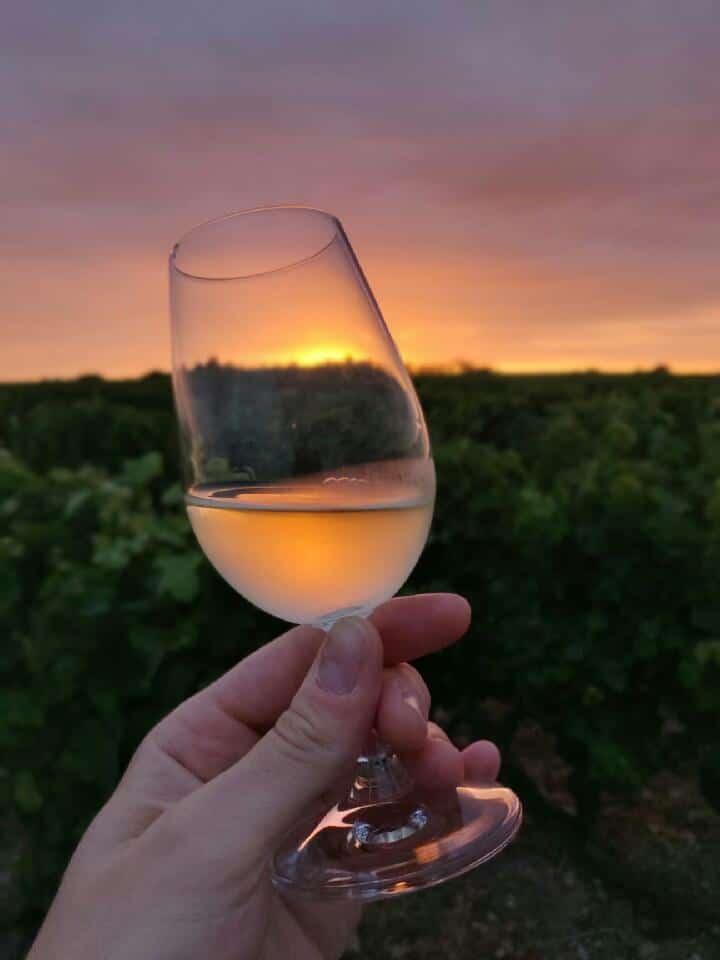 Vin AOC Vouvray